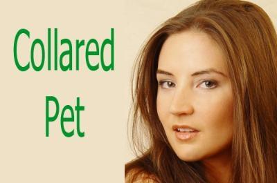 Collared Pet